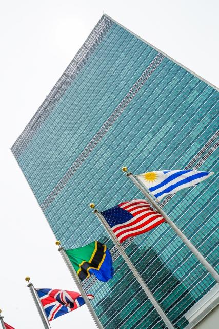 資格③:国連英検